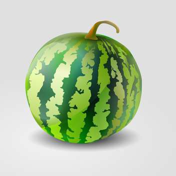 Vector illustration of green watermelon on grey background - бесплатный vector #127338