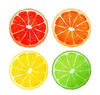 Citrus fruits set on white background - vector gratuit #130948