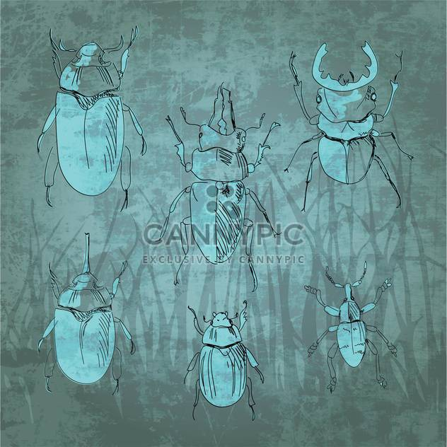 Engraving vintage insect set vector illustration - Free vector #131288