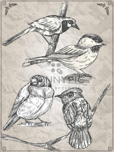 set of vector graphic birds illustration - Free vector #135258