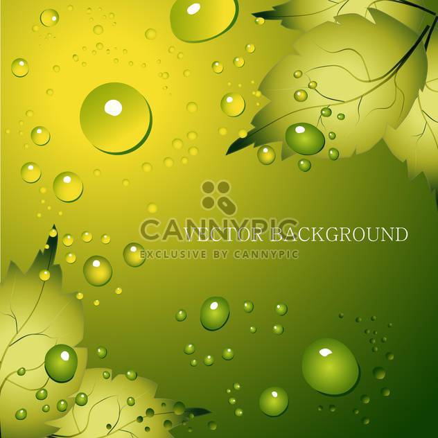 Green leaf natural background with water drops and text place - Free vector #127478
