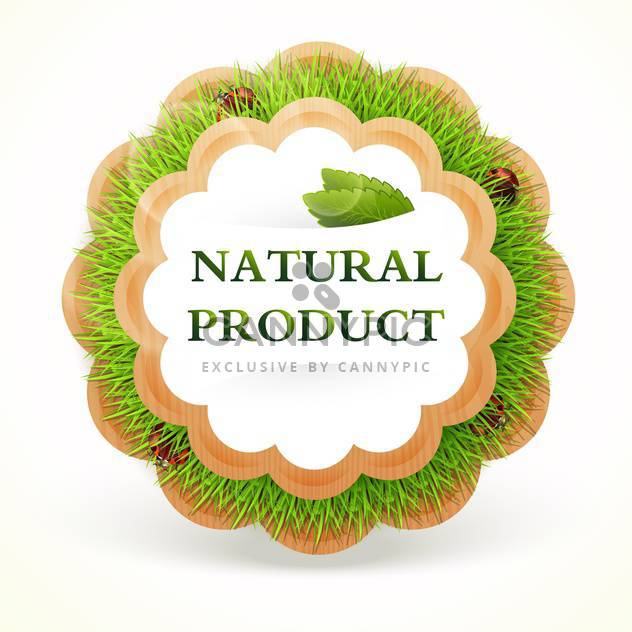 Natural vector product frame icon - Kostenloses vector #128128