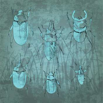 Engraving vintage insect set vector illustration - vector #131288 gratis